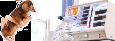 動物用人工呼吸器の<br>累計販売台数2000台以上の実績